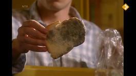 Huisje Boompje Beestje - Schimmels Op Je Brood