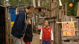 Huisje Boompje Beestje - Plagen/pesten