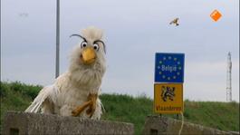 Huisje Boompje Beestje - Raaf In België (deel 1)