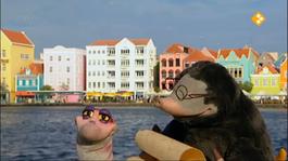 Koekeloere - Moffel En Piertje Op Vakantie Naar De Antillen (deel 1)