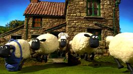 Shaun Het Schaap - De Herder