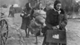 Vpro Boeken - Duitsers Als Slachtoffers, Het Einde Van Een Taboe?