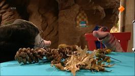 Koekeloere - Weer Herfstweer