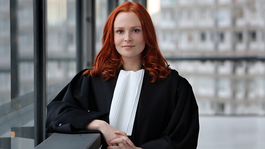 De Ridder - Een Top Advocaat Van 55