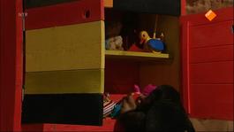 Koekeloere - Er Gekleurd Op Staan