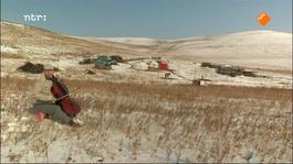 Het Uur Van De Wolf - Mongools Goud