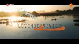 Vroege Vogels Tv - Vroege Vogels Presenteert: Levende Rivier