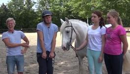 Beestieboys - Paardenmeisjes