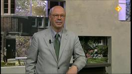 Buitenhof - Charlie Aptroot, Tineke Netelenbos, Cees Nooteboom, Tobias Eckrich