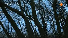 Het Uur Van De Wolf - De Vier Winters Van Theo Van Den Boogaard