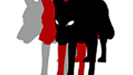 Het Uur van de Wolf The broken string: Het verhaal van een verloren taal