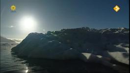 Dierenmanieren Op Reis - Wereldzeeën: Antarctica