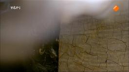 Het Uur Van De Wolf - Jheronimus Bosch - Geraakt Door De Duivel
