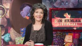 Het Sinterklaasjournaal - Promo - 12-11-2015