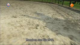 Fryslân Dok - De Beperking Voorbij: Rixt Van Der Horst