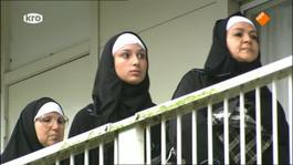 Abi - Pinguïn Vrouwtjes