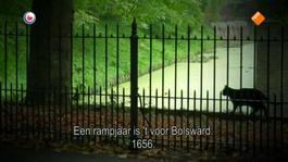 Fryslân Dok - Portret Gysbert Japicx, Bouwen Aan Een Taal