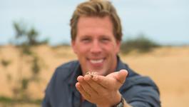 Freeks Wilde Wereld - Namibië - Verstoppertje