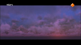 Zappbios - Lepel