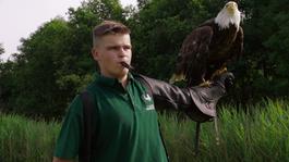 Zapp Echt Gebeurd - De Vogelvriend