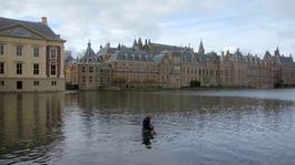 Wildernis Onder Water - Natuur Met Mensenhanden Gemaakt