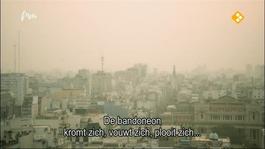 El Sonído Del Bandonéon - El Sonido Del Bandoneón