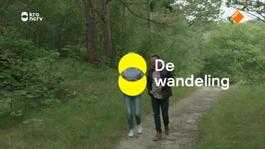 De Wandeling - Francine Oomen