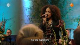 Nederland Zingt Op Zondag - In Gods Hand