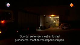 Fryslân DOK Baas op eigen erf