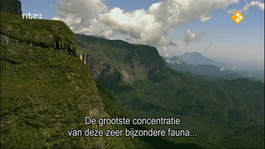 Natuur Op 2 - Natuur Op 2: Madagascar
