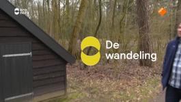 De Wandeling - Rudie Kagie