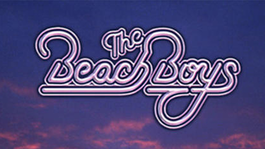 Guido Dieteren: Live in Kerkrade The Beach Boys Live at Knebworth