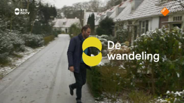 De Wandeling - Vincent Molenaar