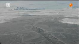 Bodhitv - Silent Snow
