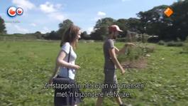 Fryslân Dok - Trek