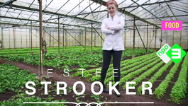 Wie is chef-kok Estee Stroker?