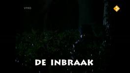 Loenatik - Seizoen 3 - Aflevering 6 - De Inbraak