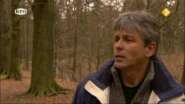 De Wandeling - Herhaling Van 13 April 2012