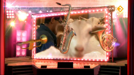 Knoop In Je Zakdoek: Muziek - Wiliam