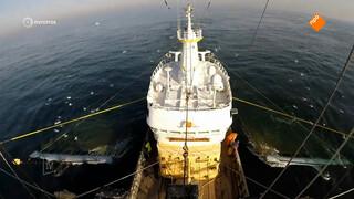 'Europarlementariërs willen pulsvisserij verbieden door fakenews'