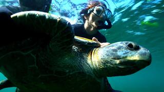 Missie Galapagos Grenzen van morgen