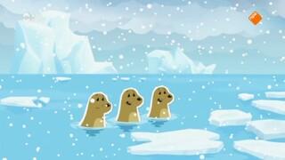 Inui Het sneeuwvlokkenraadsel