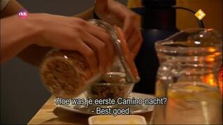 afl. 2: Joop en Martijn