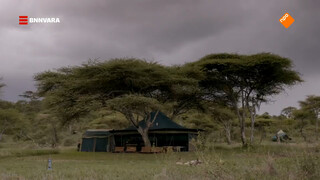 Nienke slaapt in Serengeti National Park