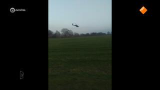 Koeien en paarden in de stress door laagvliegende helikopters defensie