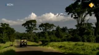 Paul Rosenmöller: Tanzania