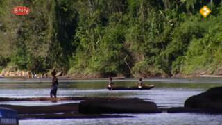 3 op reis: Suriname