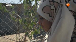 2Doc: Zaatari Djinn