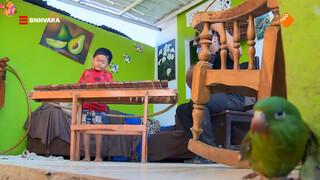 """Ryanne: """"Op marimba's rammen in Nicaragua"""""""