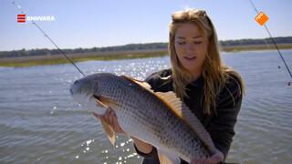 Geraldine gaat op vissenjacht in Beaufort.